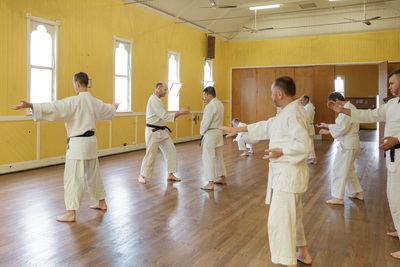 Internal Power and Aikido